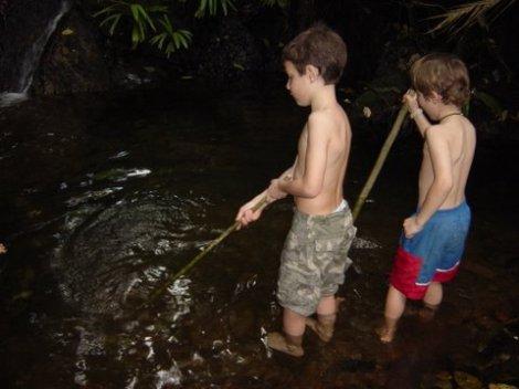 Vicarious Roadtrip: The Darien Rainforest
