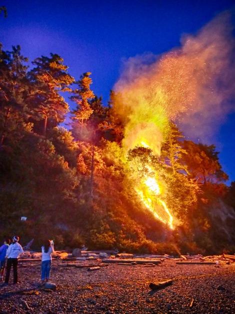 brushfire on camano shores