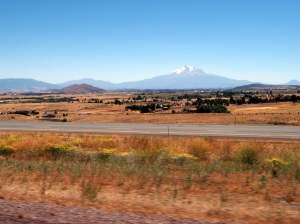 Shasta in the distance